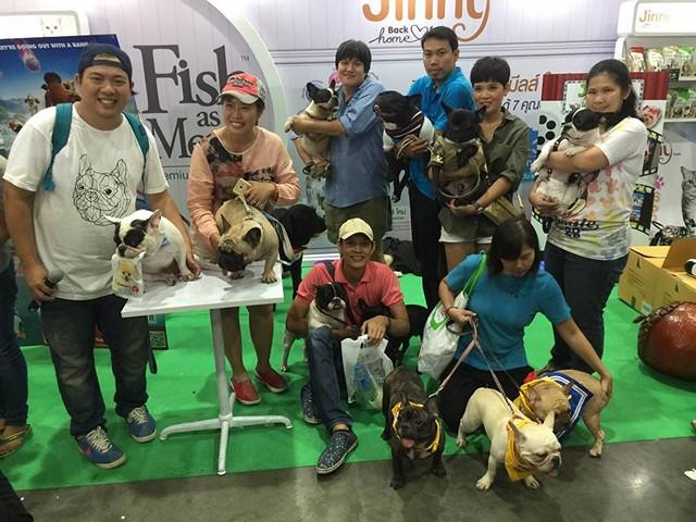 thailand_international_dog_show_2016_5